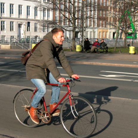 Dronning Louises fietser 20