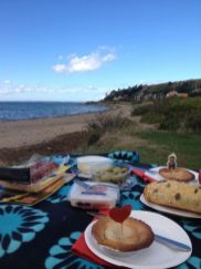 Picknicken aan de westkust. Hoi Denemarken!