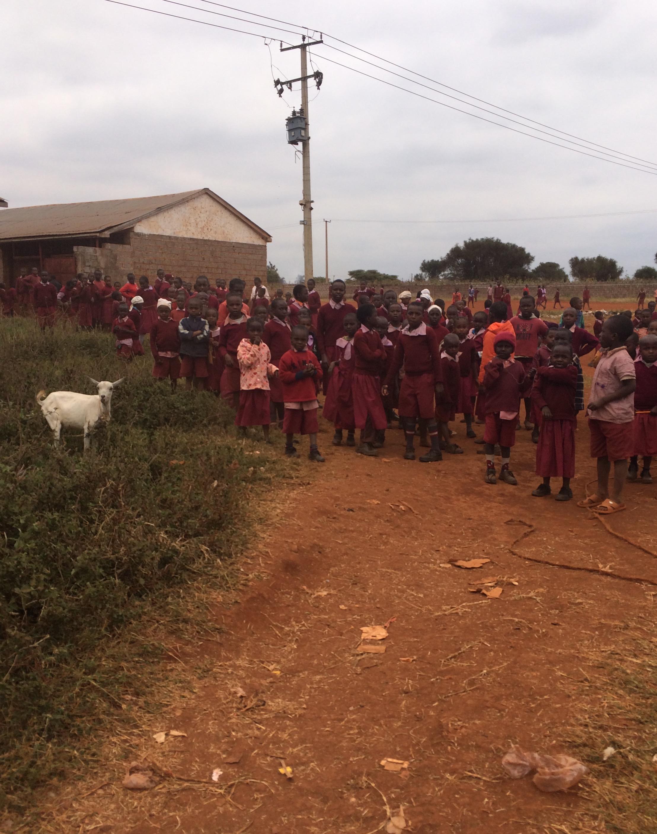 Mzungu 2016