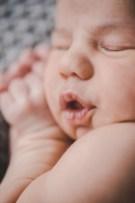 Detailfoto Neugeborenfoto Fotografin Michaela Klose kleinernordfuchs