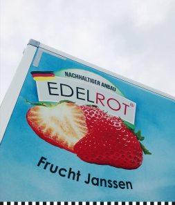 Edelrot: Die Erdbeermarke der Familie Janssen