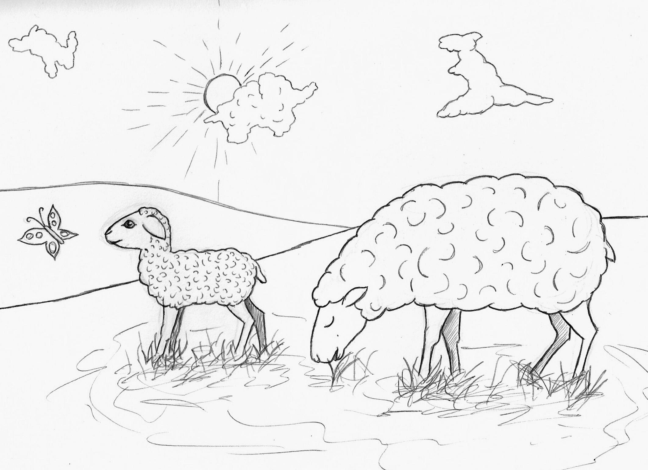 Schaf Mit Schaumaleinschmetterling Lmmchen Kleine Viecher