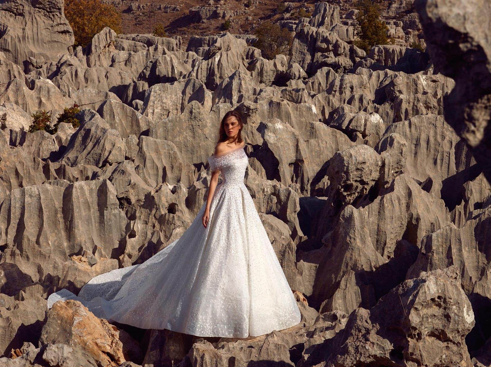 Off The Shoulder Ball Gown Wedding Dress With Beading And
