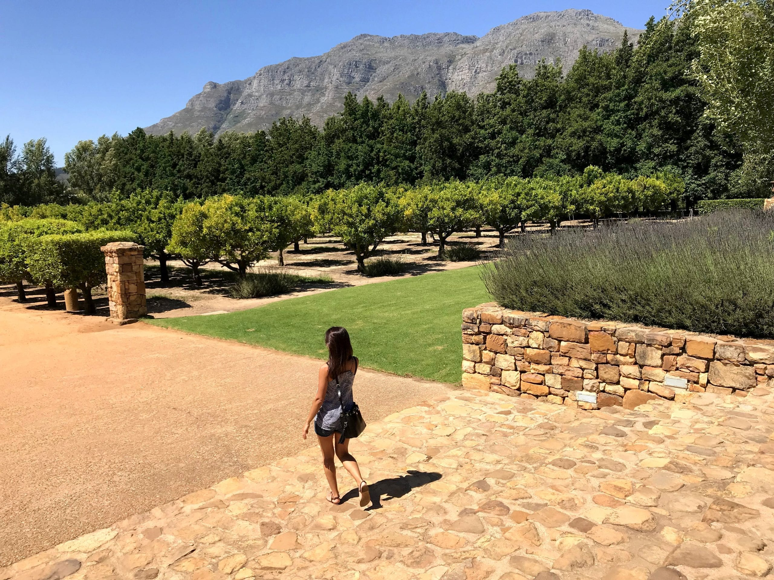 Waterford Wine Estate Stellenbosch