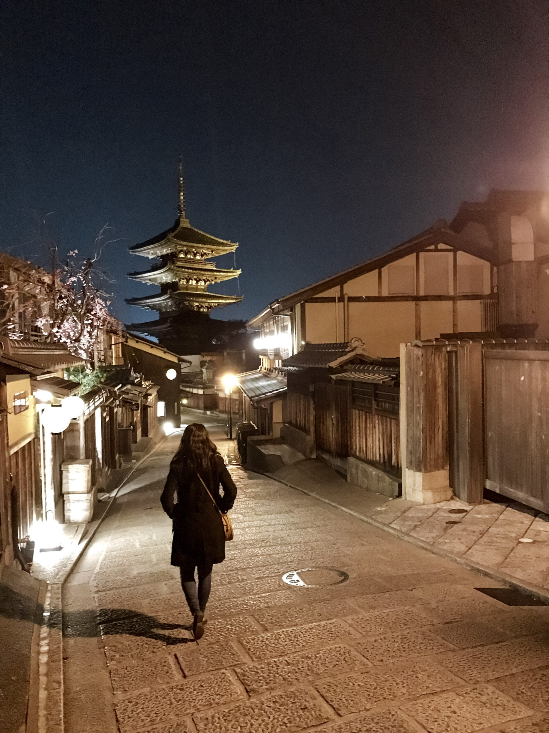 Highlights Kyoto Yakasa Pagoda