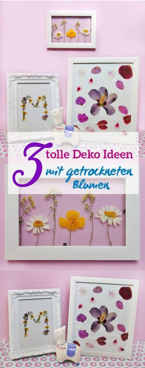 Eine tolle Deko Idee aus getrockneten Blumen sind diese Bilderrahmen, die man auch ganz einfach mit Kindern basteln kann. Die Bilder sind eine tolle Geschenkidee oder ein echter Hingucker An der Wand.