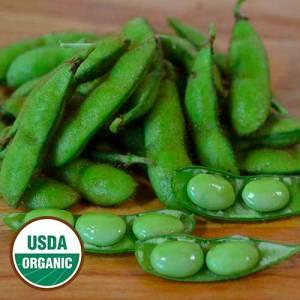 envy soybean