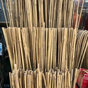 Natural Bamboo Stakes