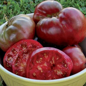 Savers Tomato Black Krim