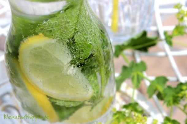 Zitronen einfrieren