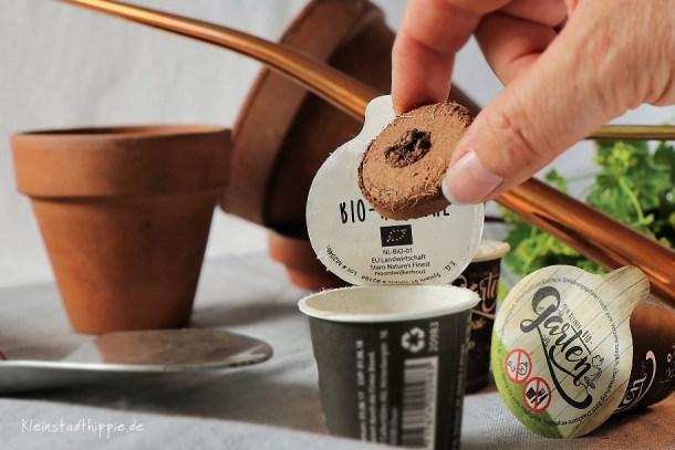 real - mein kleiner Bio-Garten: Quelltablette ins Töpfchen geben