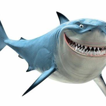 Disney Pixar Findet Nemo Haifisch Bruce kocht Food Friday auf kleinstyle.com : Misosuppe mit Wakame Algen