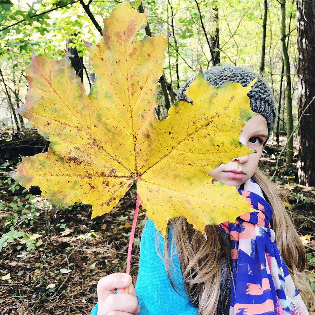 Monatsrückblick : Dankbarkeit im Oktober