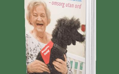 Sociala tjänstehundar – omsorg utan ord