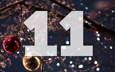 Julkalender lucka 11: Träna flera hundar samtidigt