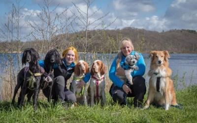 Pressmeddelande: De ger omsorg utan ord – boken om sociala tjänstehundar