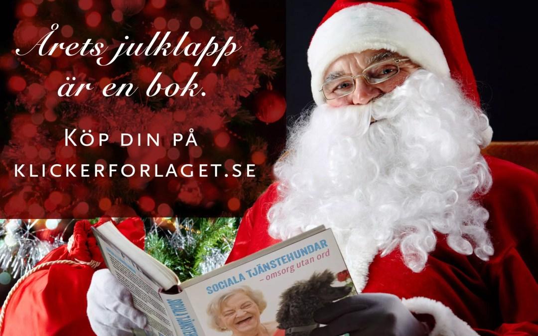 Julkampanj: 20% rabatt på våra böcker