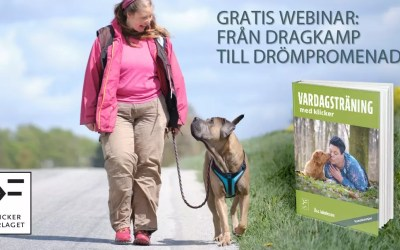 Gratis webinar: Från dragkamp till drömpromenad – Åsa Jakobsson