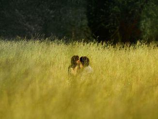 Küssendes Paar in hohem Gras