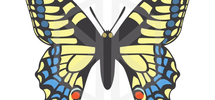 Competition Time! Submit your butterfly art to win some goodies!
