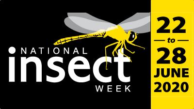 National Insect Week 2020 + Competition #EntoAtHome #InsectPhotography #Prize #NIW2020