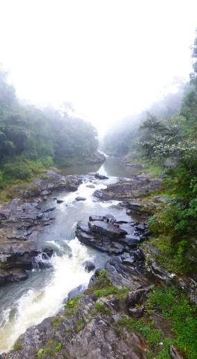 Ranomafana Nationalpark