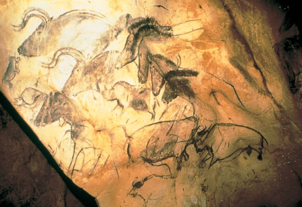 Wall Painting with Horses Chauvet Cave