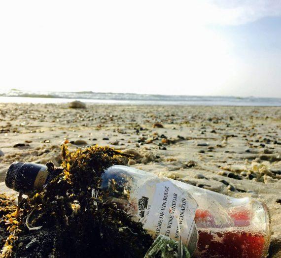 Aufräumen am Strand