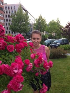 Bulgariškos rožės – vienos kvapniausių.