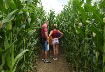 Kukuričné bludisko vo Vlčkovciach zdvojnásobí rozlohu. Návštevníci sa majú na čo tešiť