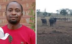 Video: Patrick je hrdina aj anjel v jednom. V Afrike zachraňuje životy zvierat a nič za to nechce