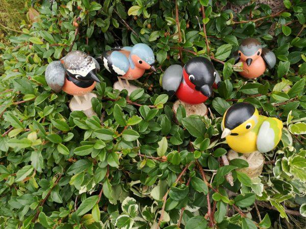Vögel für den Außenbereich