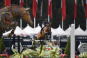 Longines World Champions Tour 2018