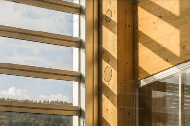 Estructura de madera del edificio con vidrios