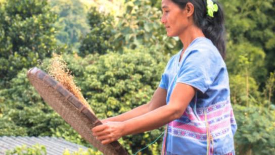 Mujer con blusa azul sosteniendo un circulo de madera con arboles al fondo