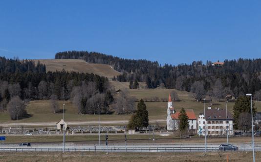Casas en medio del campo con muchos arboles