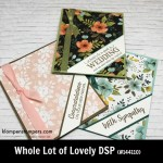 Whole Lot of Lovely Designer Series Paper (DSP) projects. Instructions posted. DSP helps you make quick and easy cards.