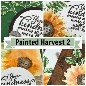 Painted Harvest 2 Online Stamping Class & Card Kit. FREE with purchase! (or can purchase class/kit!)
