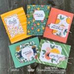 make-15-greeting-cards-simply-citrus-card-kit