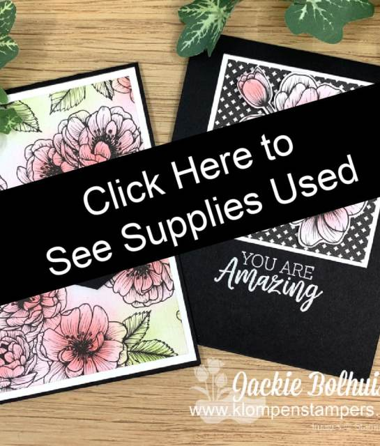 Click here to purchase supplies used to make these greeting cards.