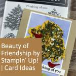 Beauty of Friendship by Stampin' Up! | Card Ideas