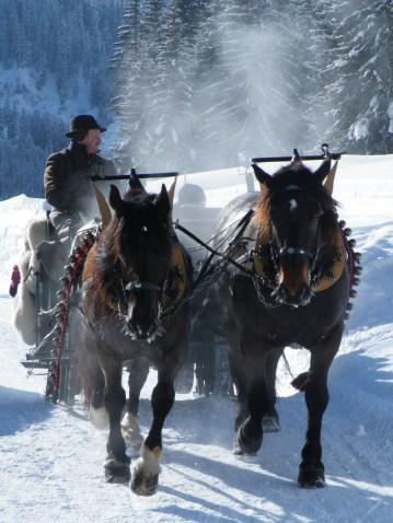 One of the many things to do in Klosters during the winter