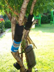 Karate Tree