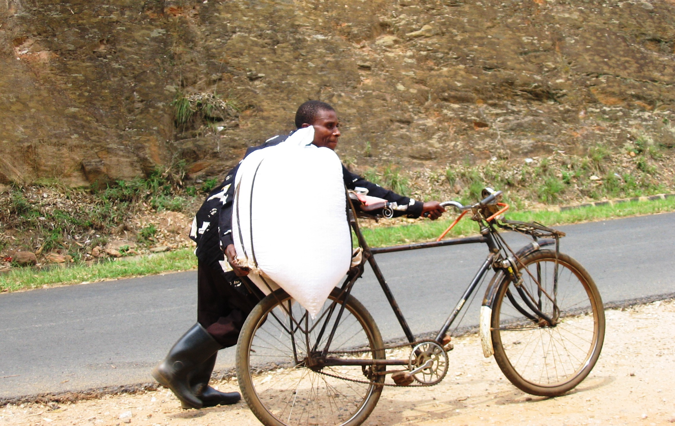 bike carries goods from market