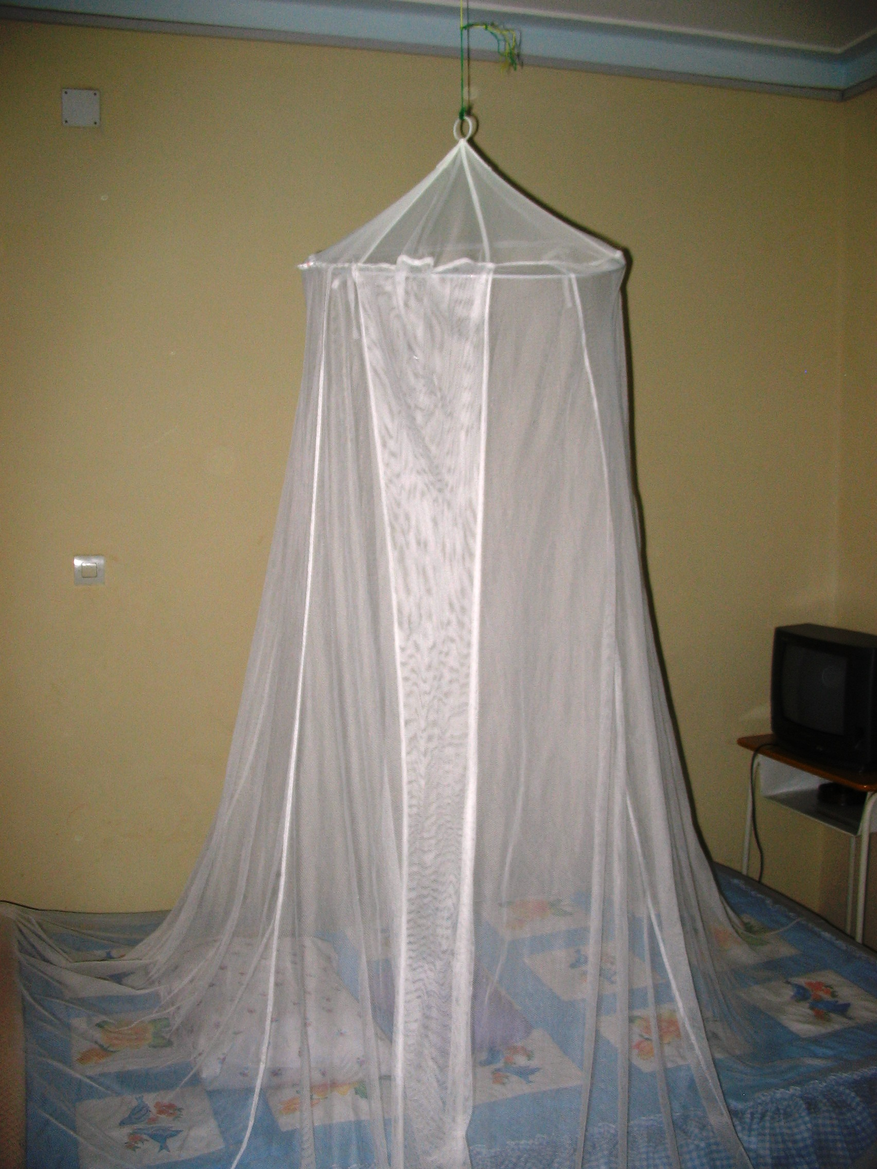 mosquito net over my hotel bed