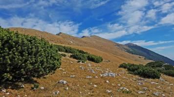 Mali vrh-Belscica 0008-20171013_134725