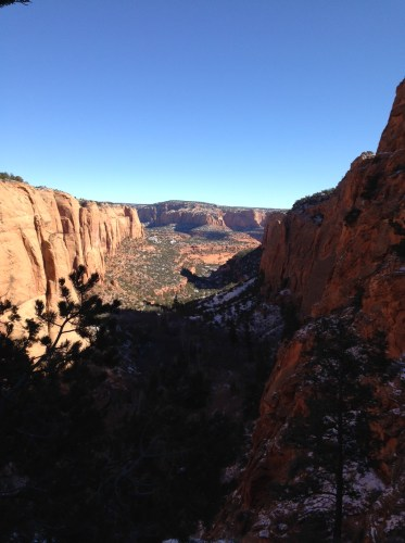 My NaNoWriMo Round 2: Week 3, or Navajo National Monument