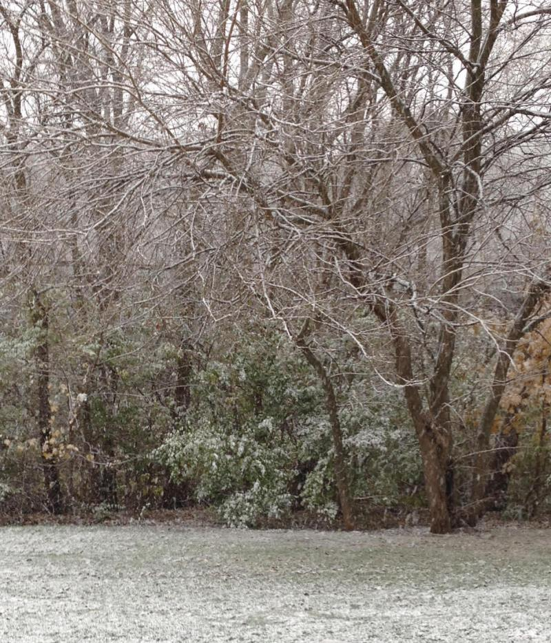 My NaNoWriMo Round 3: Week 4 is filled with Michigan snow