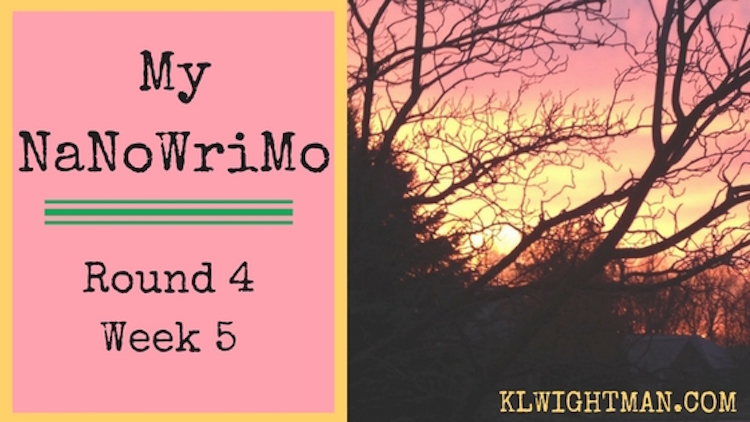 My NaNoWriMo or National Novel Writing Month Update #5 2016