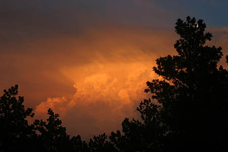 thunderhead orange